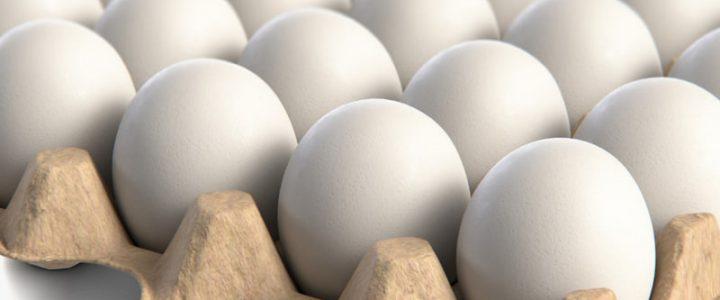 قیمت تخم مرغ از قیمت مصوب کمتر است